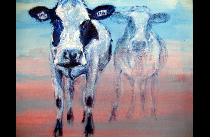 Koeien, 20-20 cm, acrylverf.